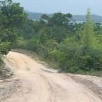 slingrig väg i Brasilien